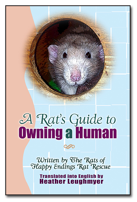 A Rat's Guide to Owning a Human